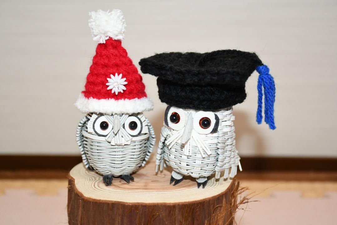 フクロウ用の帽子