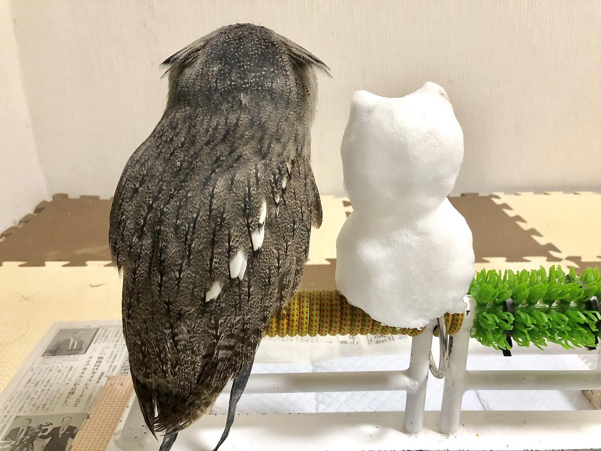 雪だるまとフクロウ