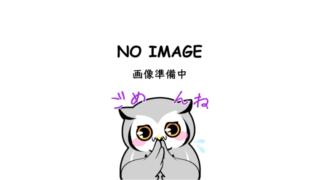 フクロウ画像がありません