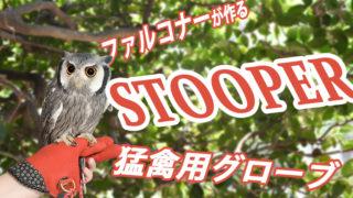 猛禽用グローブSTOOPER